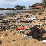 Beach Clean-Ups on Nosy Komba