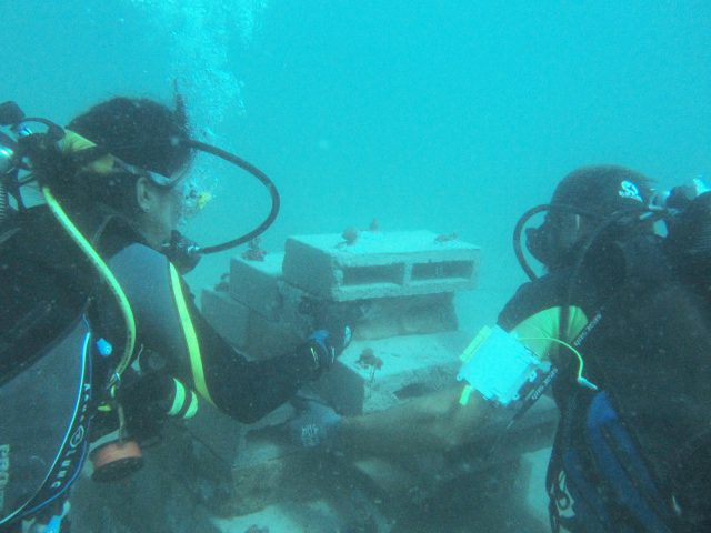 Artificial Reef Diving 1
